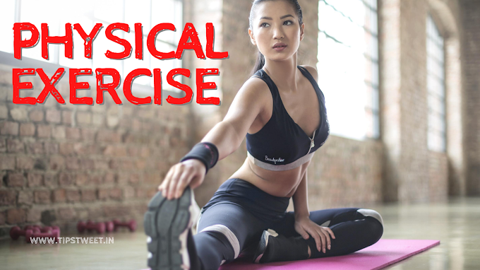 Physical Exercise Essay 500 words, Physical Exercise Essay for KIDS