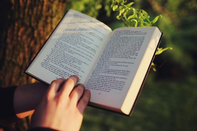 Baca Buku Baru / Fiksi yang Membuat Anda Penasaran