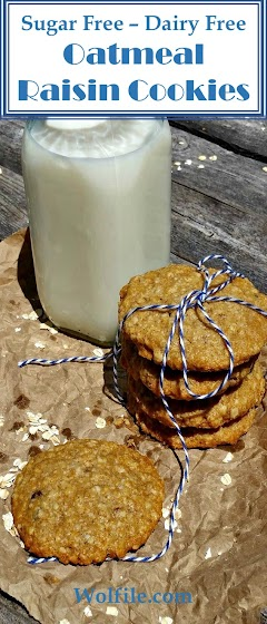 Sugar Free Dairy Free Oatmeal Raisin Cookies Recipe
