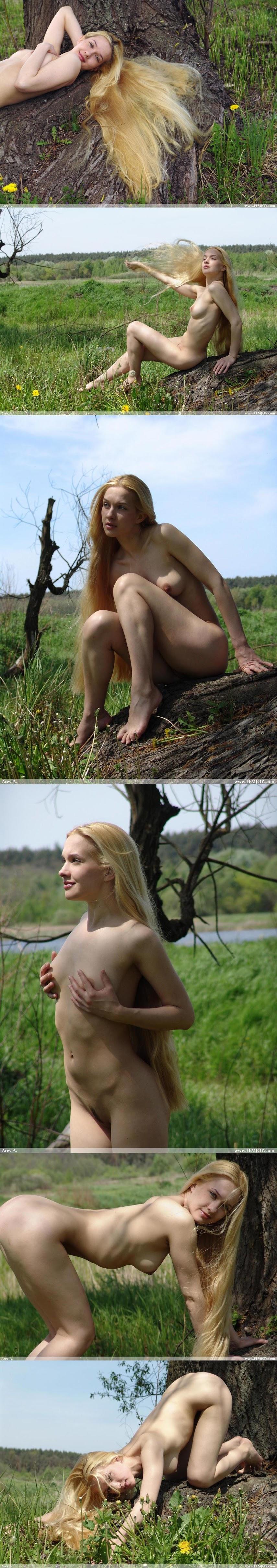 FEdf  - 2005-09-04 - Desiree - Pure Nude x55 3000px