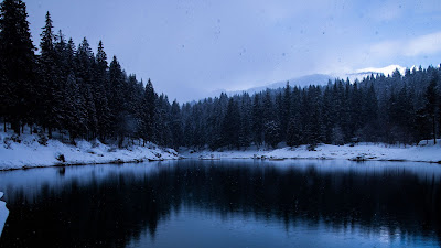 HD wallpaper Winter lake, snow, trees