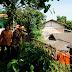 Kepala Kanwil Kemenag DKI Tinjau Kemiringan Tanah Belakang MTsN 33 Jakarta