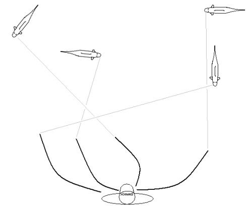 Fly Carpin Landing Carp On The Fly Rod
