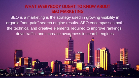What Everybody Ought to Know About Search Engine Optimization Marketing