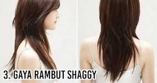 Gaya rambut Shaggy