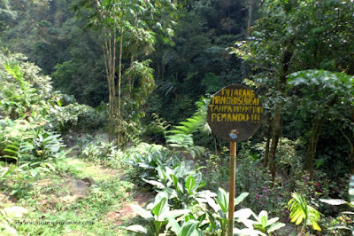 pengawasan pemandu wahana wisata welo asri petungkriyono