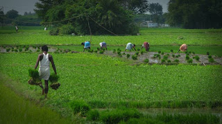 3- UP govt announces it's maiden Agriculture Export policy, 2019