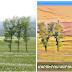 Հայկական Ktav հավելվածով կարող եք ցանկացած լուսանկար վերածել գեղանկարի