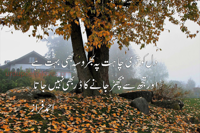 shayari ahmed faraz