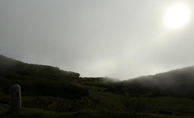 Hochebene Paúl da Serra, Madeira