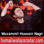 https://aliwalayazadar.blogspot.com/2020/08/muzammil-hussain-nagri-nohay-2021.html