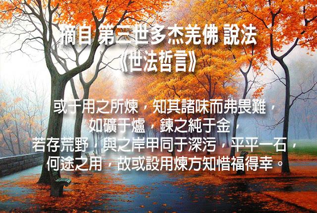 第三世多杰羌佛說《世法哲言》(五十四)