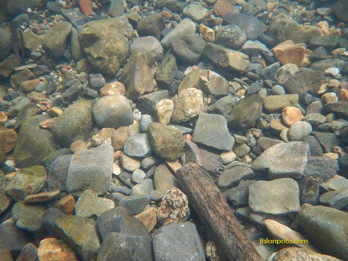 Nikon Underwater aw130
