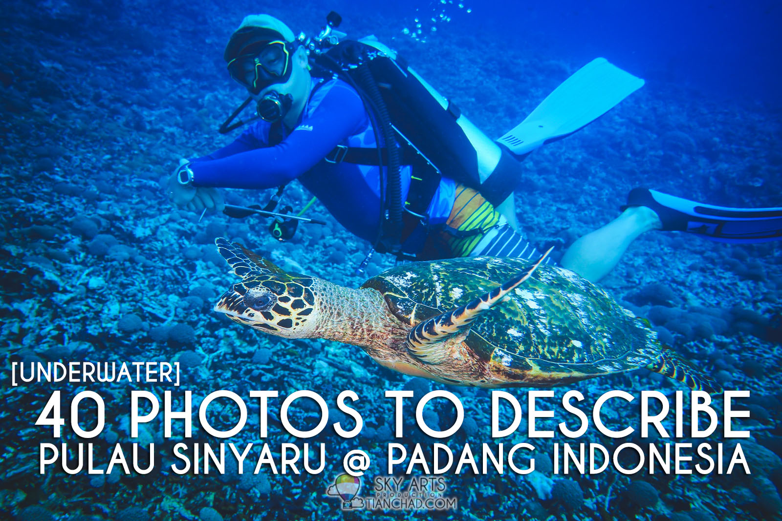 398a01fb13e6 I am still new to diving sport but it has been great to explore beautiful  underwater heaven in the sea of Mabul Island (my first diving trip) and  Pulau ...