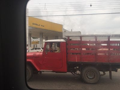 De Santa Cruz de la Sierra a Samaipata. Cerdos en camioneta.