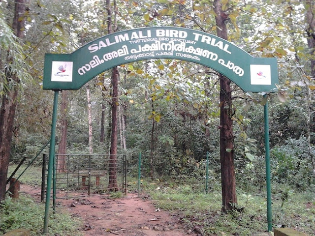 Salim Ali Bird Sanctuary Munna,r Best Places to Visit in Munnar