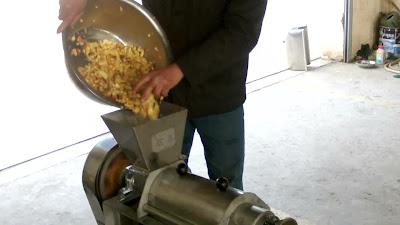 mesin pengolahan buah apel