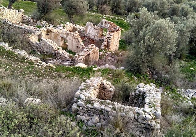 Ένας ξεχασμένος αρχαίος δρόμος στην Αργολίδα - Έκκληση από Ελληνίδα του εξωτερικού για την συντήρηση του