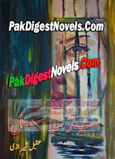 Neer Salasal Novel Complete By Aqeel Sherazi Pdf Free Download