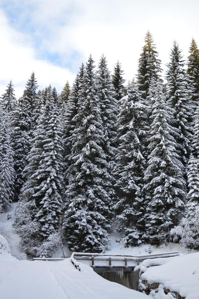 cosa fare in montagna sulla neve se non si scia
