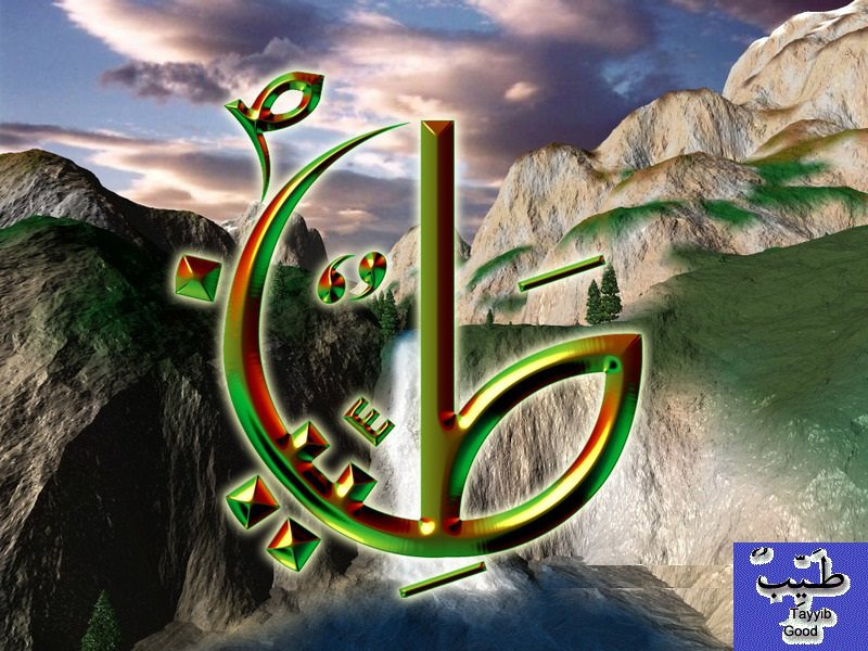 Quran Quotes In English Wallpapers Tayyab Names Of Prophet Muhammad Pbuh Life Of Muslim