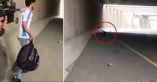 Leaked video shows Israeli policewoman shooting innocent Palestinian man 'for fun'