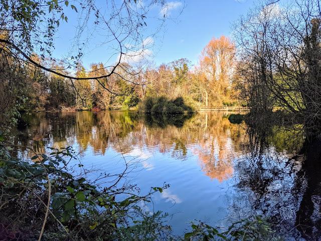 Lake at Altamont Gardens in Ireland
