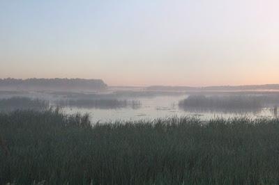 Summer Solstice often brings misty dawns