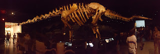 panoramica dinosaurio