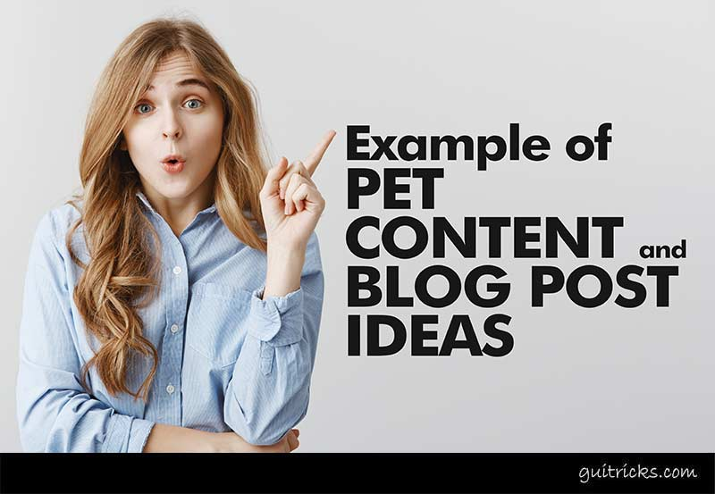 Examples Of Pet Content and Blog Post Ideas