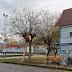 Κοπή ψηλών δέντρων και κλαδέματα σε Κοινότητες του δήμου Θέρμης