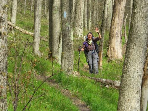 trail hiker Denali