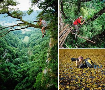 Fotografía  de impacto en el bosque.