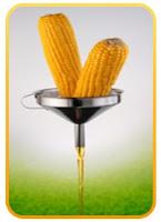 Aliment #1 nuisant à votre cerveau : Le fructose