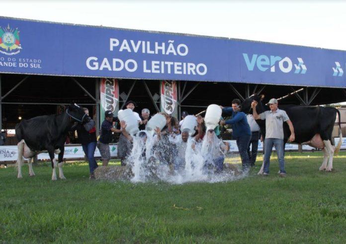 Tradicional Banho de Leite premia vencedores do concurso da Expoleite Fenasul