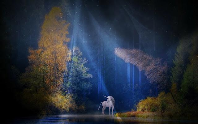 في الغابة وحيد القرن الحصان