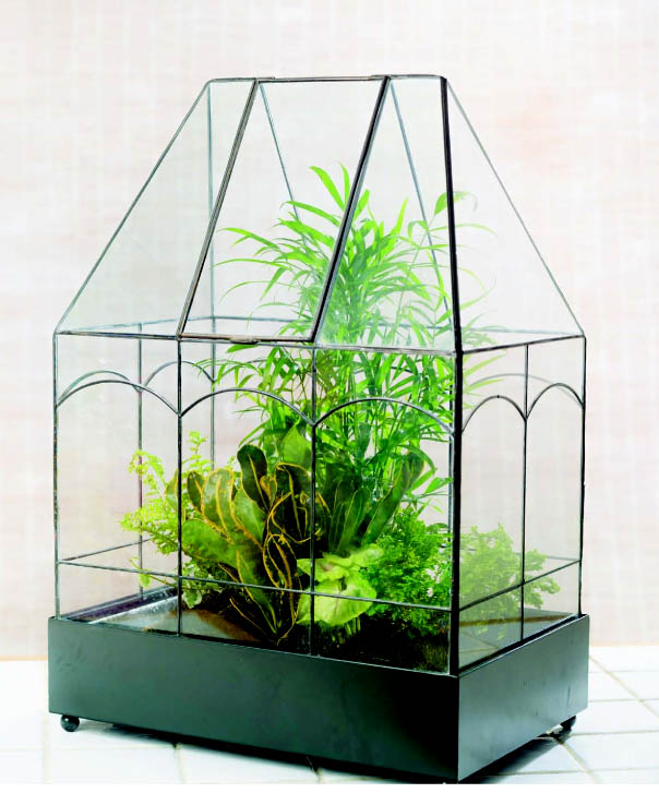 Terrariums - Gardens Under Glass Designing, Creating, and Planting Modern Indoor Gardens by Maria Colletti Review fom Amy Renea of Crafting With Nature.jpg