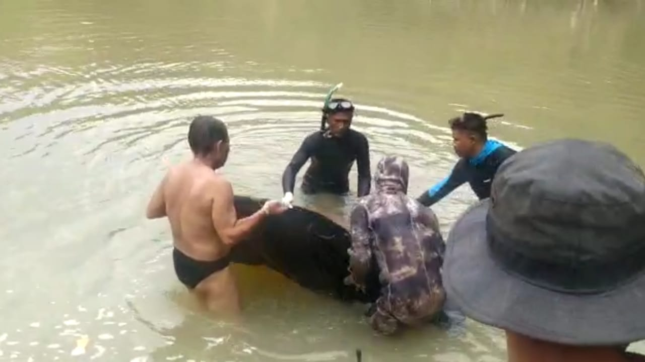 Satu Korban Tenggelam di Sungai Cikarang, Objek Wisata Leuwi Kenit Akhirnya Ditemukan