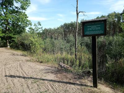 Długie Bagno - część obszaru ochrony ścisłej Sieraków, utworzonego jeszcze w II RP