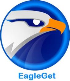 تحميل برنامج EagleGet اخر اصدار برابط مباشر