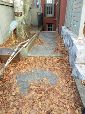 Cabbagetown Toronto Backyard Fall Cleanup Before by Paul Jung Gardening Services--a Toronto Organic Gardener