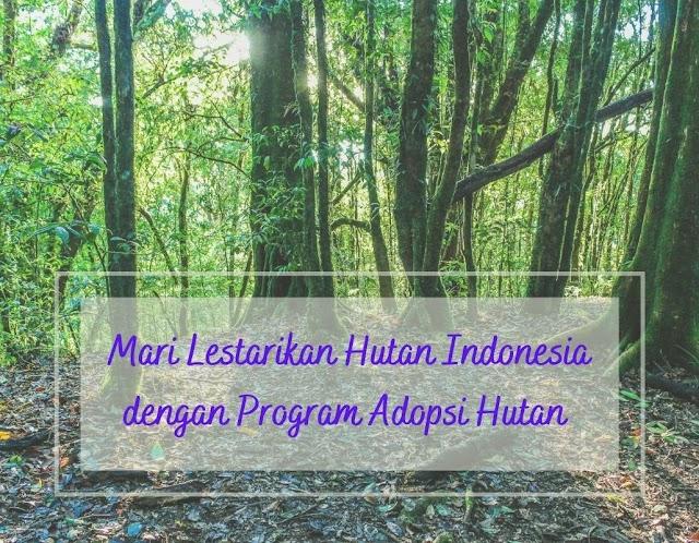 Mari Lestarikan Hutan Indonesia dengan Program Adopsi Hutan
