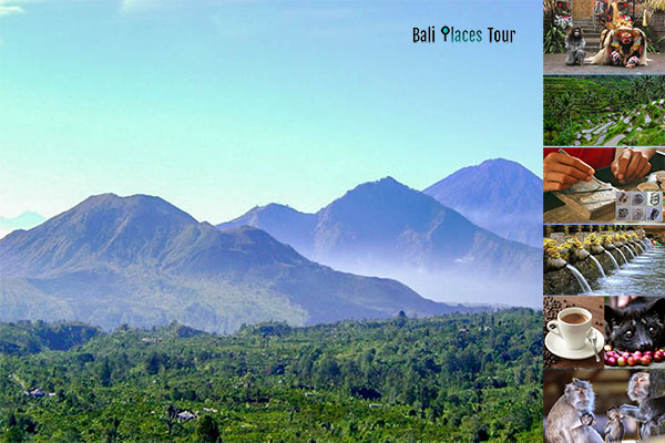 Bali Full Day Kintamani Volcano Tour with Ubud Village and Rice Terraces - Bali Trip Activities Package and Bali Tourist Attractions