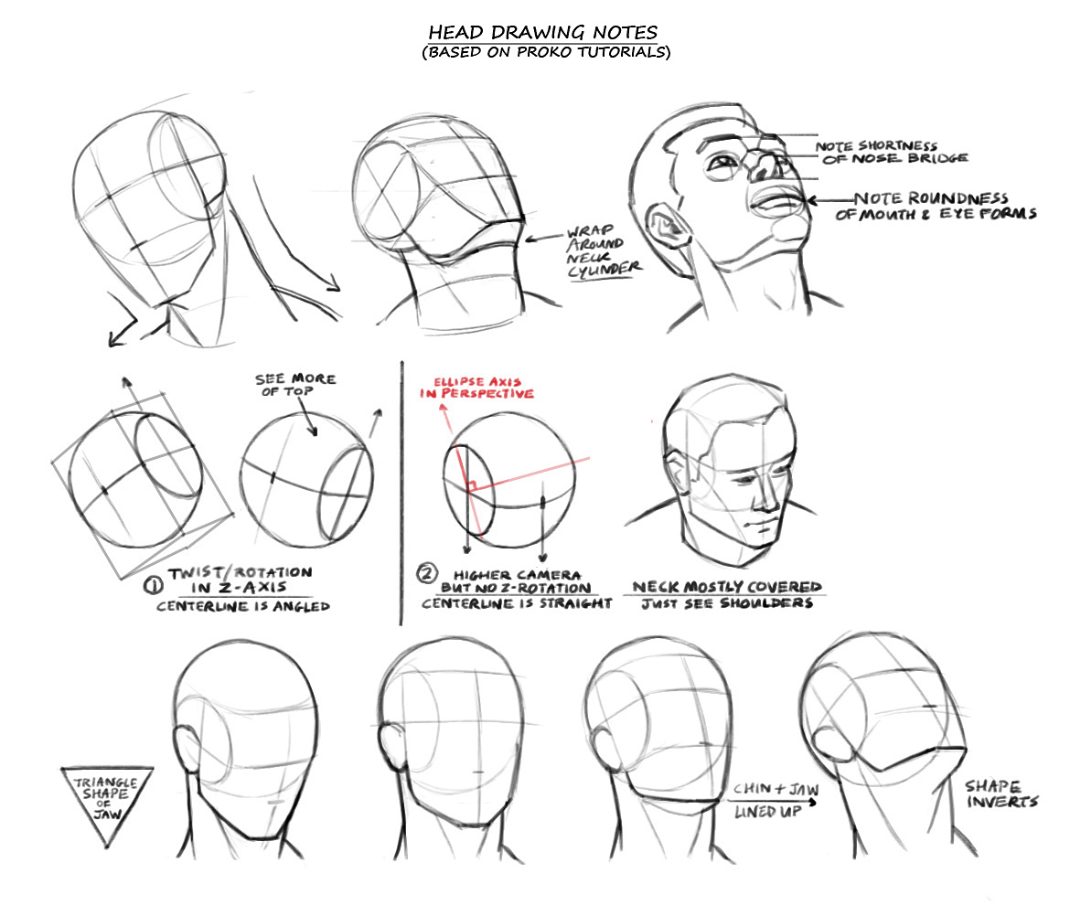 Will Burns: Head Drawing Guides