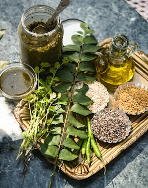 Curry leaves and coriander leaves podi in olive oil