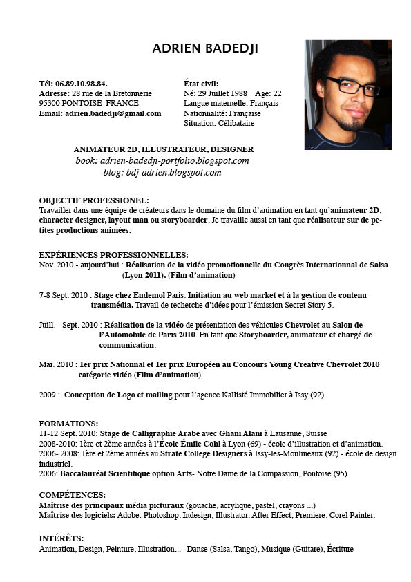 french exemple cv resume