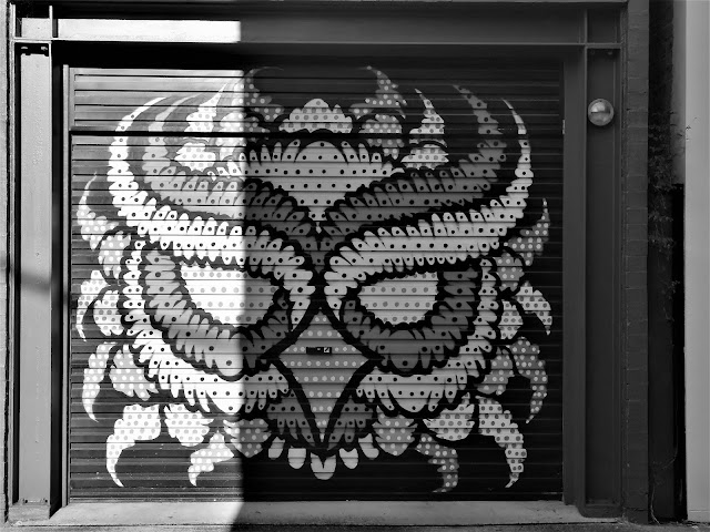 Alexandria Street Art | Mural by Nico