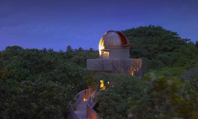 Photo of observatory above the vegetation at night