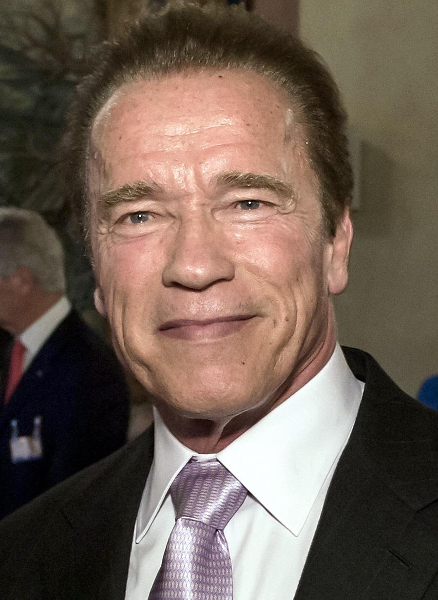 Arnold Schwarzenegger profile family, wiki Age, Affairs ...