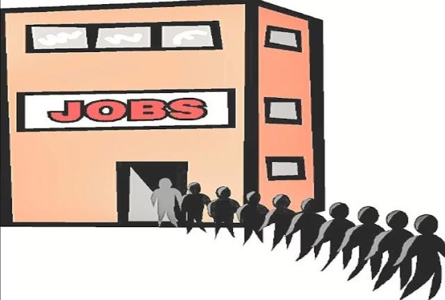 Shimla Govt Jobs